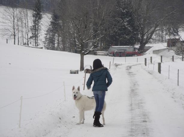 Switzerland, February 2010